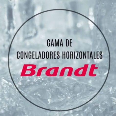 brandt_home_2